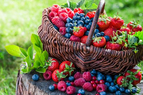 Kleinfruit en snoephagen | De nieuwe trend!