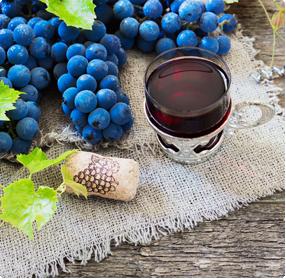 Wijndruiven planten kopen