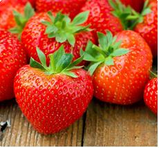 Fragaria Temptation aardbeien planten kopen